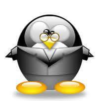 Pingouin intello