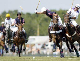 Parier sur les sports équestres