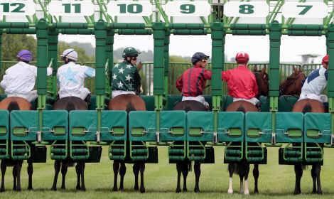 Sport-hippique-stalles